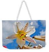 White Lily Flower Against Blue Sky Art Prints Weekender Tote Bag