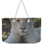 White Lion Cub  Weekender Tote Bag