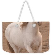 White Mare Approaches Number One Close Up Muted Weekender Tote Bag