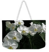 White Moth Orchid Phalaenopsis And Ferns Weekender Tote Bag