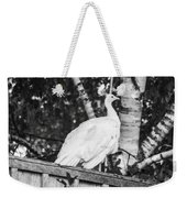 White Peacock Weekender Tote Bag