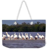 White Pelicans And Little Friends Weekender Tote Bag