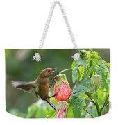 White-sided Flowerpiercer Weekender Tote Bag