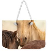 White Stallion Wild Horses On Navajo Indian Reservation  Weekender Tote Bag