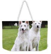 White Swiss Shepherd Dogs Weekender Tote Bag