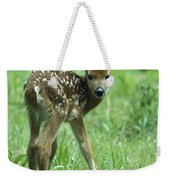 White-tailed Deer Fawn Meadow Weekender Tote Bag