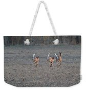 White Tailed Deer Running Weekender Tote Bag
