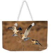 White-tailed Kite Trio Weekender Tote Bag
