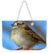 White Throated Sparrow And Blue Sky Weekender Tote Bag