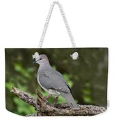 White-tipped Dove Weekender Tote Bag