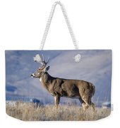 Whitetail Buck On A Ridge Weekender Tote Bag