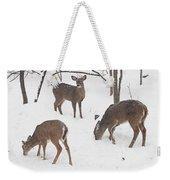 Whitetail Deer In Snowy Woods Weekender Tote Bag