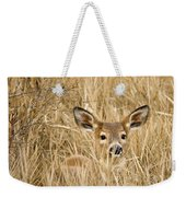 Whitetail In Weeds Weekender Tote Bag