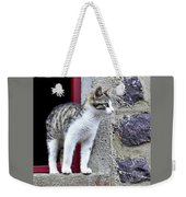 Who Goes There - Kitten Weekender Tote Bag