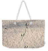 Who Goes There Weekender Tote Bag