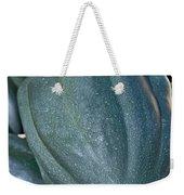 Whole Acorn Squash Art Prints Weekender Tote Bag