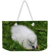 Whooper Swan Juvenile  Weekender Tote Bag
