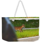 Why Did The Bobcat Cross The Road Weekender Tote Bag
