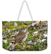 Wild Birds Hermit Thrush Weekender Tote Bag