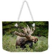 Wild Bull Moose Weekender Tote Bag