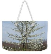 Wild Cherry Tree In Spring Bloom Weekender Tote Bag