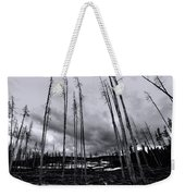 Wild Fire Aftermath In Black And White Weekender Tote Bag