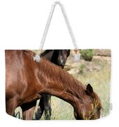 Wild Horse Mama And Her Baby Weekender Tote Bag