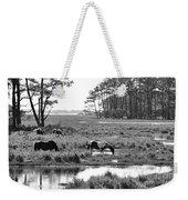 Wild Horses Of Assateague Feeding Weekender Tote Bag by Dan Friend