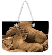 Wild Mustang Statue I I I Weekender Tote Bag
