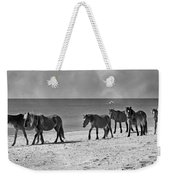 Wild Mustangs Of Shackleford Weekender Tote Bag