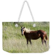 Wild Palomino Weekender Tote Bag by Sabrina L Ryan