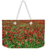 Wild Poppies Growing In A Field, South Weekender Tote Bag