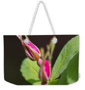 Wild Rose Buds Weekender Tote Bag