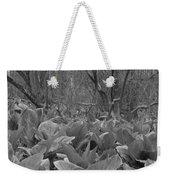 Wild Skunk Cabbage Bw Weekender Tote Bag