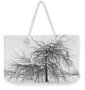 Wild Springtime Winter Tree Black And White Weekender Tote Bag by James BO  Insogna