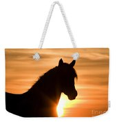 Wild Stallion At Sunrise Weekender Tote Bag