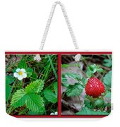 Wild Strawberry Plant - Fragaria Virginiana Weekender Tote Bag