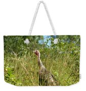 Wild Turkey In The Sun Weekender Tote Bag