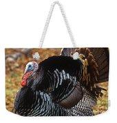 Wild Turkey Male Displaying Long Island Weekender Tote Bag