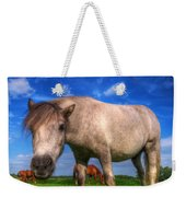 Wild Young Horse On The Field Weekender Tote Bag