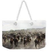 Wildebeest Migration  Weekender Tote Bag