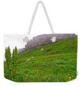 Wildflowers And Mountainous Bluffs At Point Amour In Labrador Weekender Tote Bag