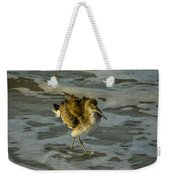 Willet Washing 1 Weekender Tote Bag