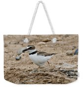 Wilsons Plover At Nest Weekender Tote Bag