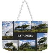 Wind-bent Flag Trees In Tierra Del Fuego Weekender Tote Bag