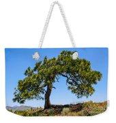 Lonesome Pine Tree Weekender Tote Bag