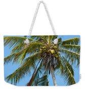 Windblown Coconut Palm Weekender Tote Bag
