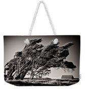 Windswept Weekender Tote Bag by Dave Bowman