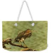 Windy Morn Green Heron Weekender Tote Bag