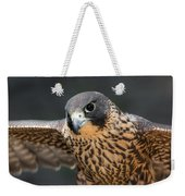 Winged Portrait Weekender Tote Bag